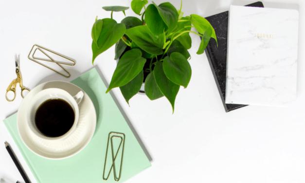 Sådan tjener du penge med affiliate links på din blog