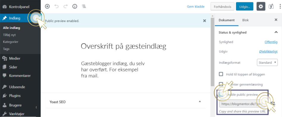 Gæsteblogger guide plugin public post previewlink